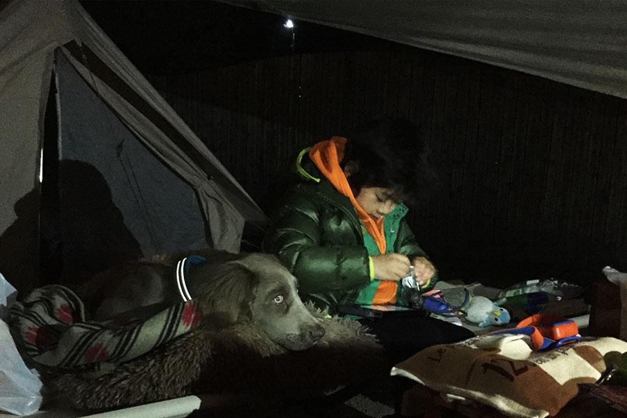犬と行くキャンプ