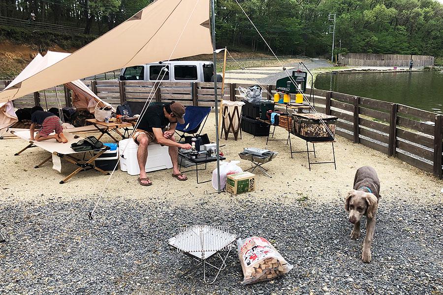 犬連れキャンプ